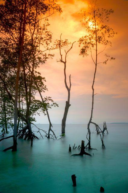 Lovely colors! #JetsetterCurator via Dear MonetKlanang Beach, Time Travel, Colors, Beautiful, Mothers Nature, Places, Kuala Langat, Travel Photography, Sunrises Sunsets