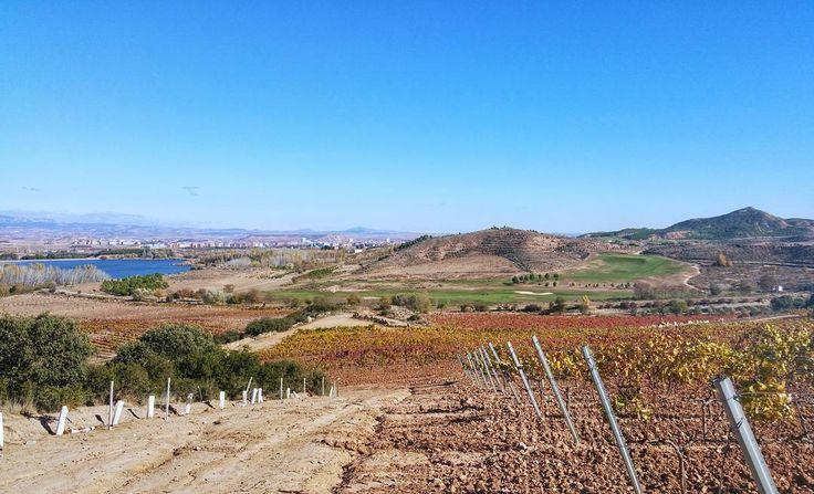 Hay que valorar lo que tenemos poner en valor nuestro patrimonio. Una de las conclusiones del #enoforo de @rioja_alavesa #Rioja #tourism #winetours #travel #wine #winelover #turismo #enoturismo #experience #winetastelovers #riojawine #gastronomía #visitSpain #vino #viaje #tapas #winetasting #instariojawine #gastronomy #instawinetours #winecountry #wineries #worldplaces #winetrip #winetravel #viajar #grapevines #winetourism #winetourist
