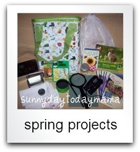 Spring Projects: spring crafts, nature study, nature walks, play ideas, books http://sunnydaytodaymama.blogspot.co.uk/p/spring-projects.html