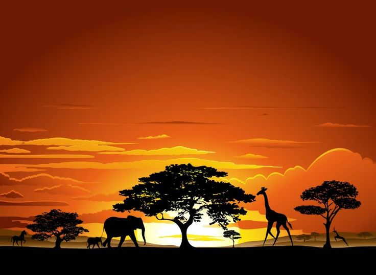 Afrika im Sauerland: 3 Tage im top 4* Hotel, Frühstück, Dinner und SPA nur 79,50€!  http://www.schnaeppchenfee.de/?p=54116  #nrw #wellness #sauerland #nrw