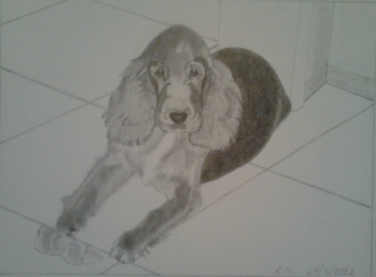 A cute dog. The final drawing.