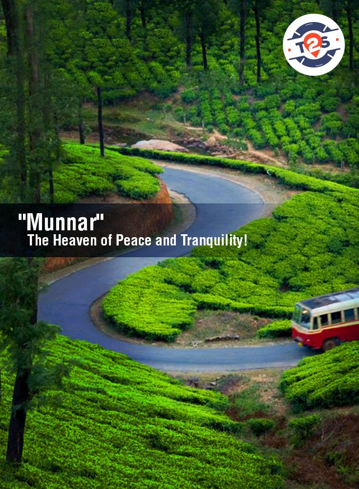 """""""Munnar"""" - A perfect destination for #NatureLovers. You must plan a visit to this heaven at least once in your lifetime! #munnar #NatureLover #travel2save #kerala"""
