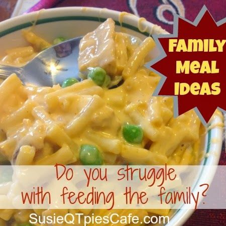 Do you struggled with what to feed the family? Here are some tasty menu plan ideas to help you out.