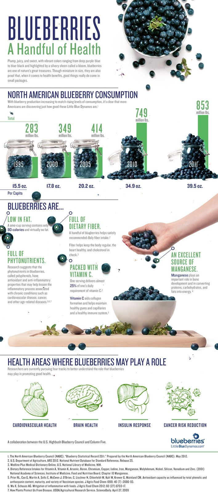 Blueberries: A Handful of Health #infografía