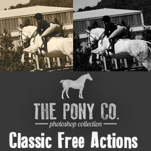 The Pony Co. Free Classic Action Duo