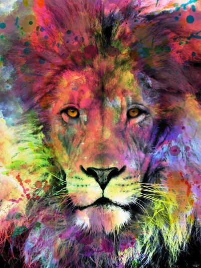 Cute Animal Print Wallpaper Lion In Color Em 2019 Colorido Le 227 O Papel De Parede