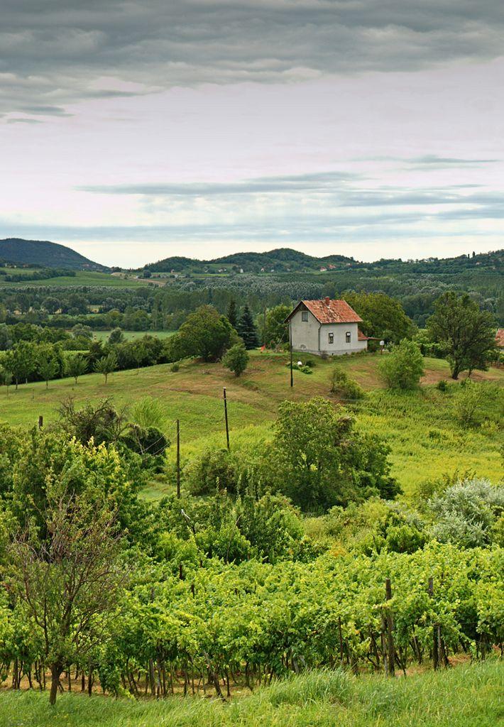 Balaton-felvidék - Hungary (by zolakoma)