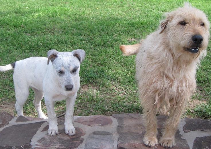 Ellie and May-may