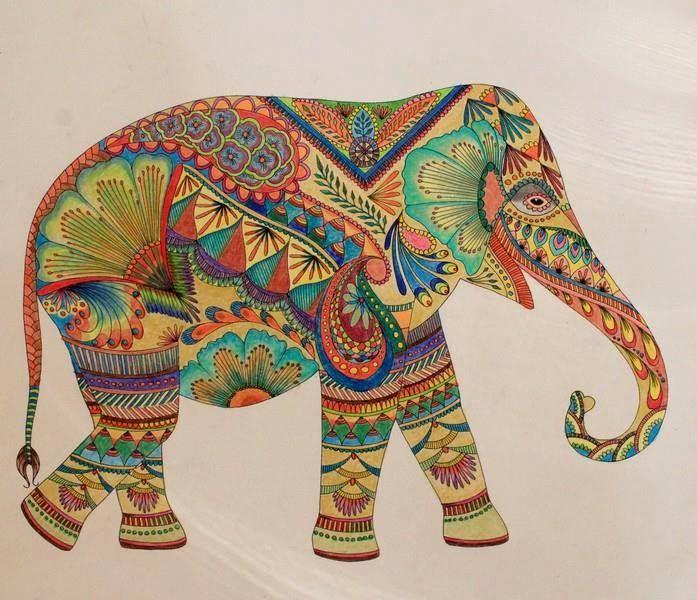 49 Best Images About Millie Marotta Elefantes On