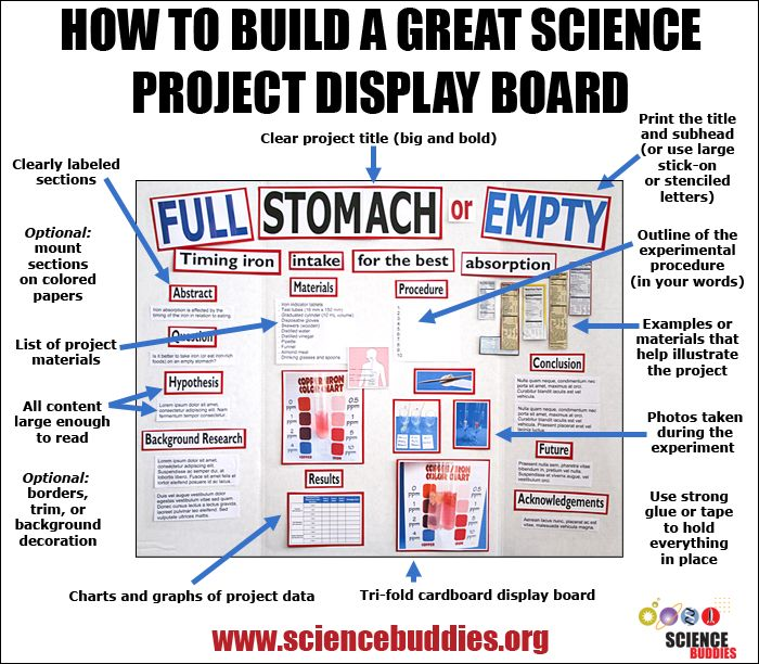 science project display board layout Science project board design elmer's 36 x 48 single ply tri-fold display board - duration: 1:12 mybindingcom 10,439 views 1:12.
