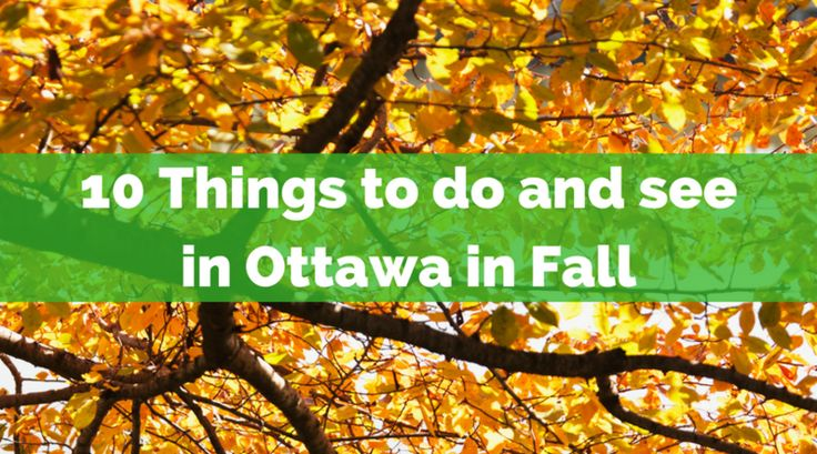 10 Things to do and see in Ottawa this Fall | Ottawa | Kids in the Capital