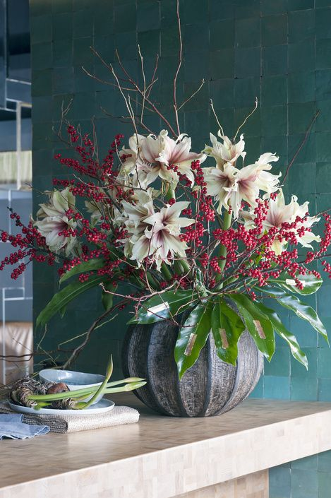 The Amaryllis on the Flower Agenda from weeks 48 to 52 | Flower Council