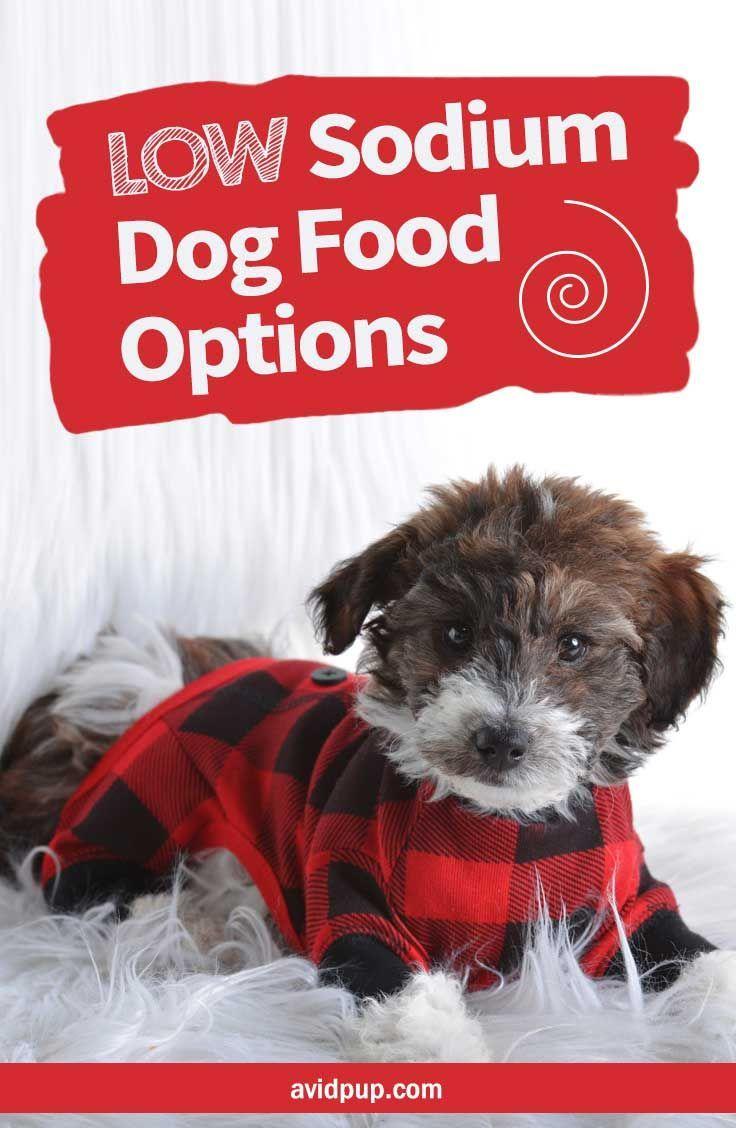 Low Sodium Dog Food Options, Best Picks (5 dry & 2 canned)   Dog food recipes, Best dog food, Dogs