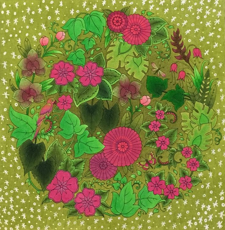 Johanna Basford - Magical Jungle, Faber Castell Polychromos, Magická džungle, Omalovánky pro dospělé #magicaljungle #johannabasford #polychromos #omalovanky #coloring #coloringbook #omalovankyprodospele