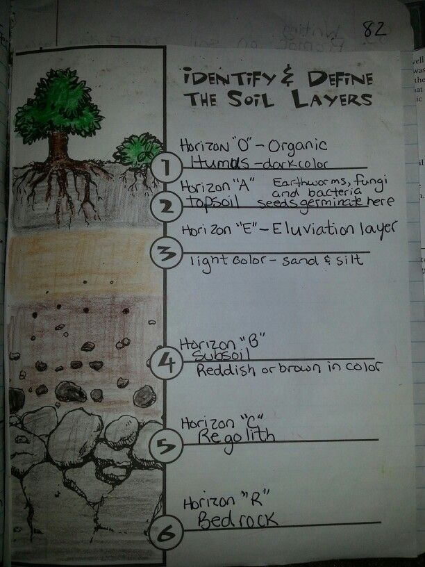 Soil layers | Travis 4th grade science journal | Pinterest