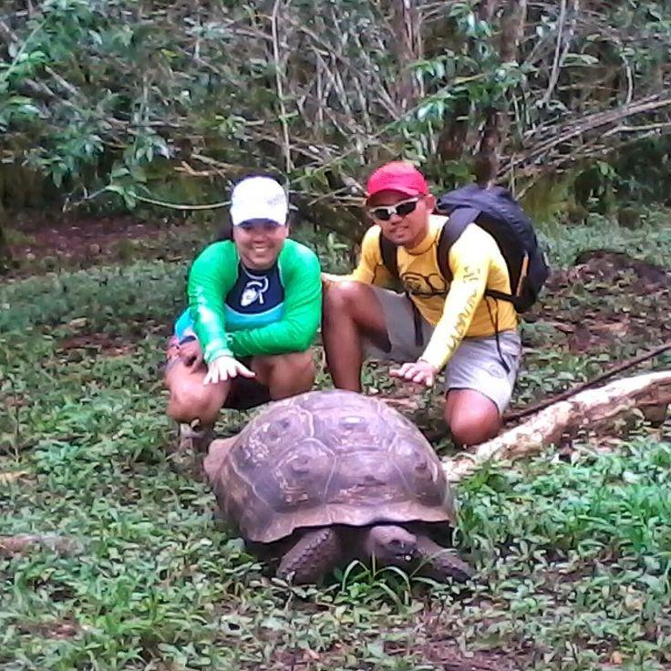 Começo de ano... essa foto combina a gente vai no passo da tartaruga  gigante de Galápagos. Ilhas Galápagos (2013). #viagenspararecordar #umlugarparavoltar #ecuador #equador #ilhas #arquipelago #galapagos #tartaruga #tortuga #turtle