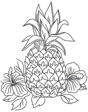Sketched flowers and pineapples combine to create the perfect summer design! Downloads as a PDF. Use pattern transfer paper to trace design for hand-stitching.