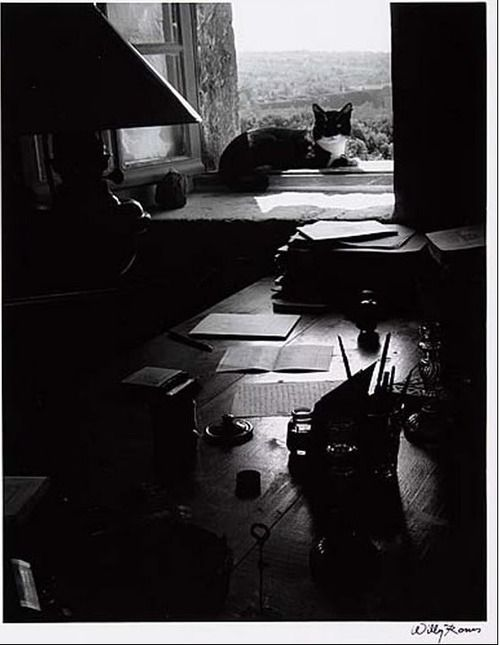 The Writer' S Cat, Gordes, France, 1954. by Willy Ronis (1910-2009)