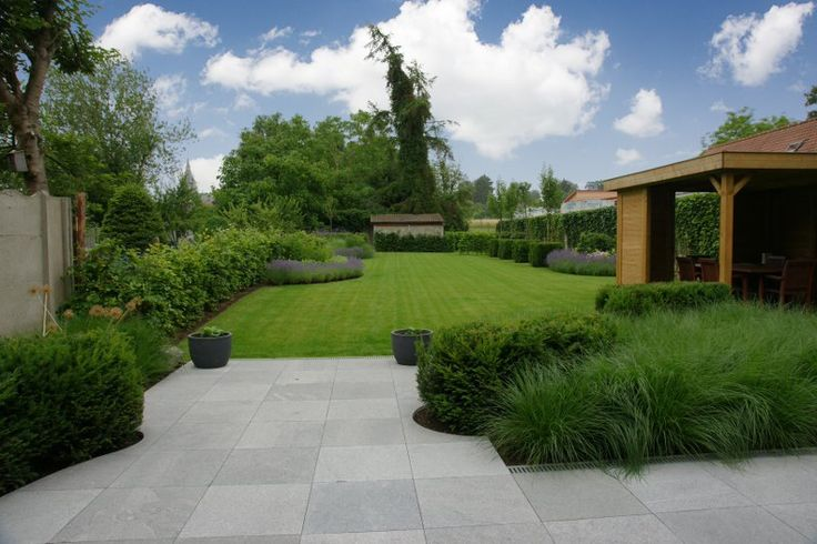 Paarsgroene bewondering - Groen van bij ons - Bloemen en planten