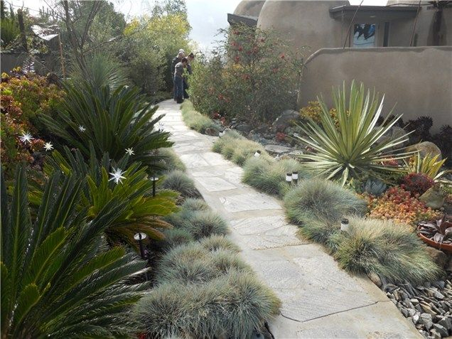 1000 ideas about southern landscaping on pinterest for Southern california landscape ideas
