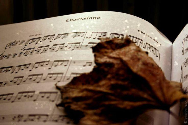 Music by Giovanni Allevi #autumn#ossessione
