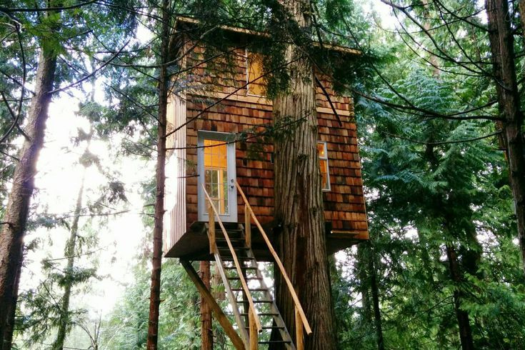 7 Tiny Tree Houses for Adults That Your Inner Child Will Love