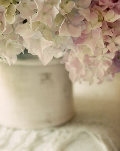 Hydrangeas...doesn't even matter what color, they are my absolute favorite.