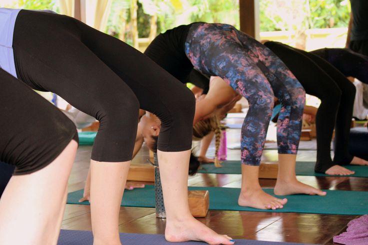 Yoga Teacher Training in Bali Essential Retreat Organizer