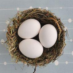 NATURKINDER: Inside-Out-Easter-Basket