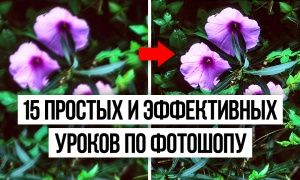15простых иэффективных уроков пофотошопу