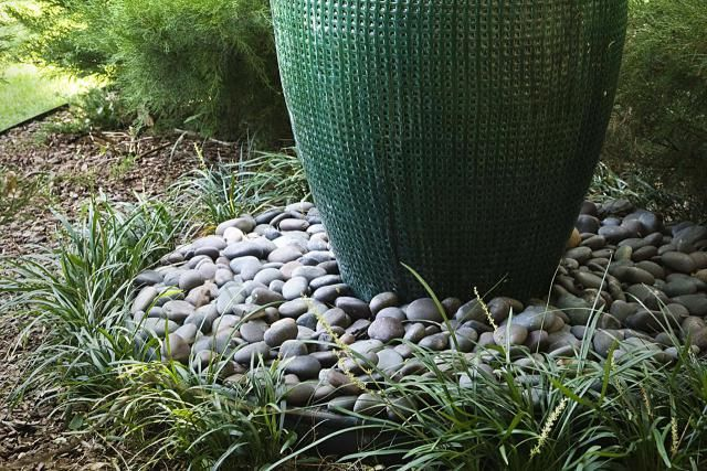 Grass or ground cover liriope plants ground covering for Ornamental grass bed