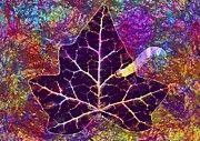 "New artwork for sale! - "" Leaf Worm Slick Worm Species  by PixBreak Art "" - http://ift.tt/2uWjTj9"