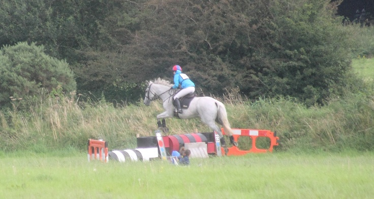 Irish Sport horse 19 years old flying round cross country. He currently uses Seahorse Atlantic Kelp supplement