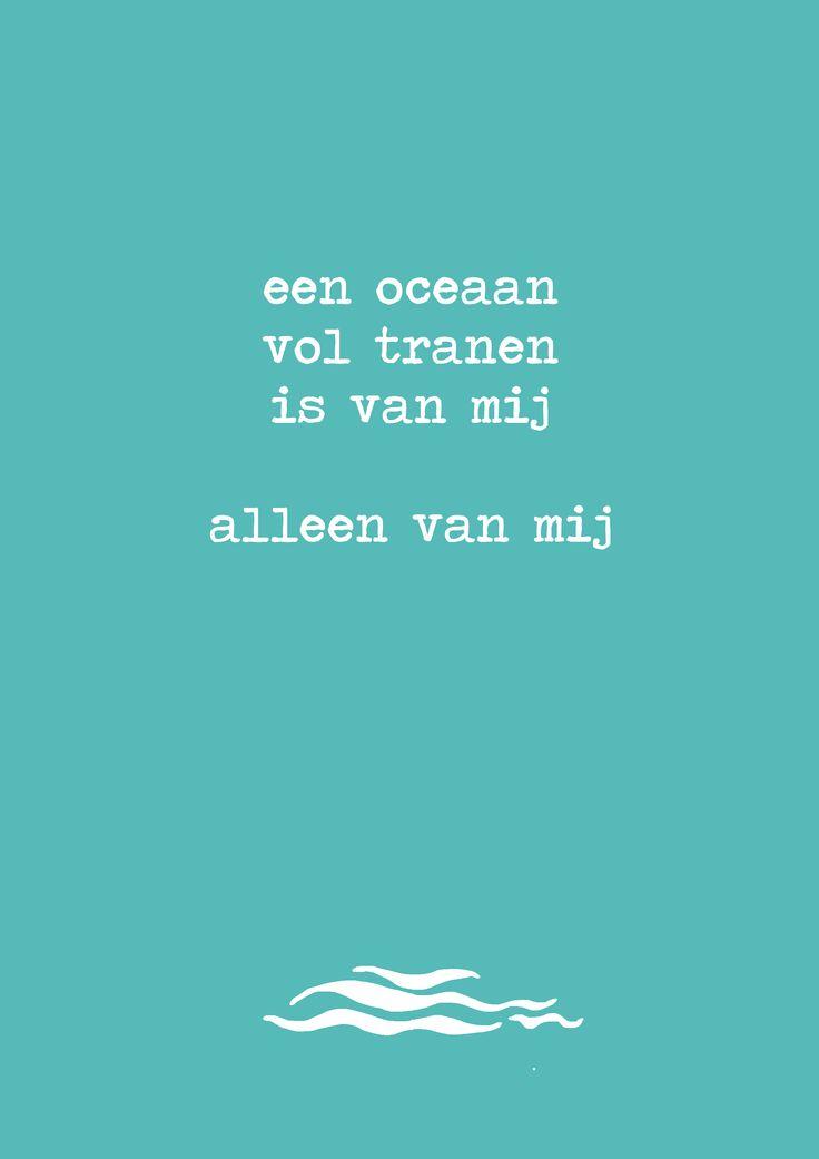 Tekst Racoon Opdreef Nu Pinterest Racoon Dutch