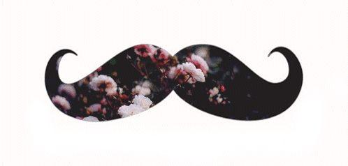 mustache gif - Google Search
