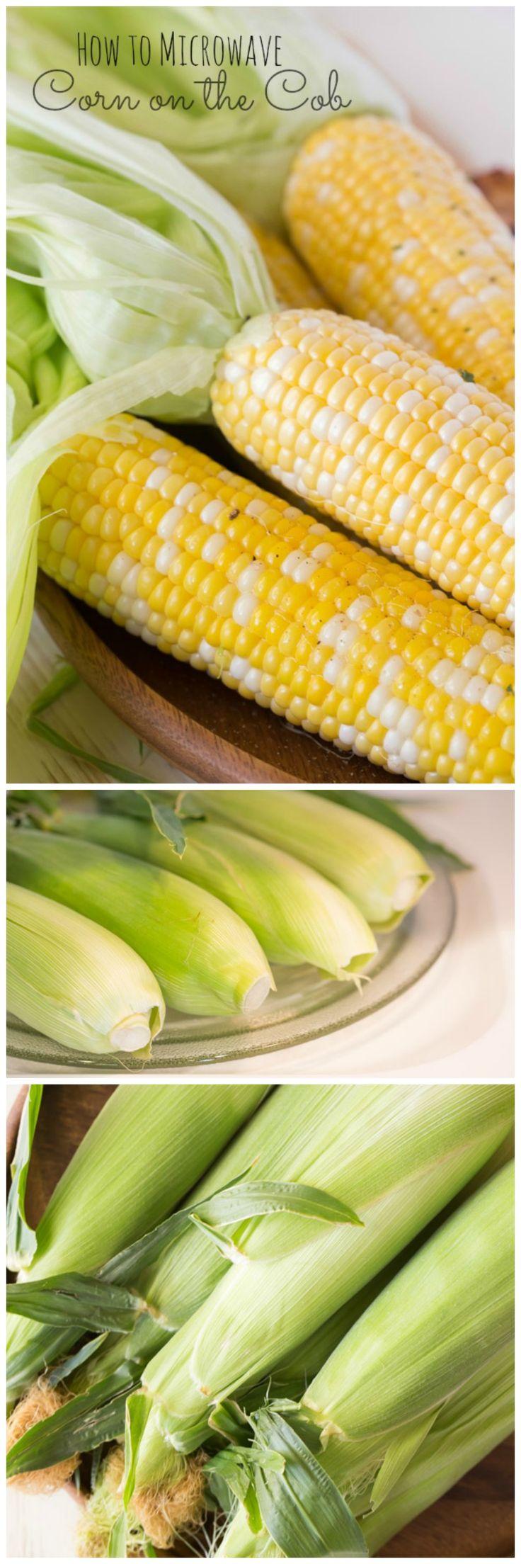 How to Grow Corn | Guide to Growing Corn