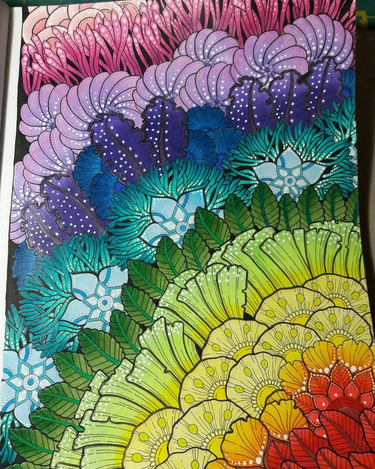 My Finished Page From Martywoodskk Gorgeous Book Exotic Kingdom Prismacolor Exotickingdom