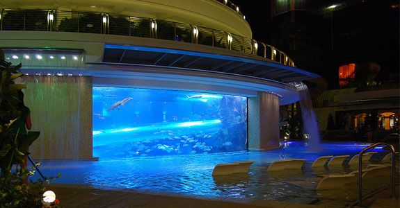 Pool at the Golden Nugget, Las Vegas