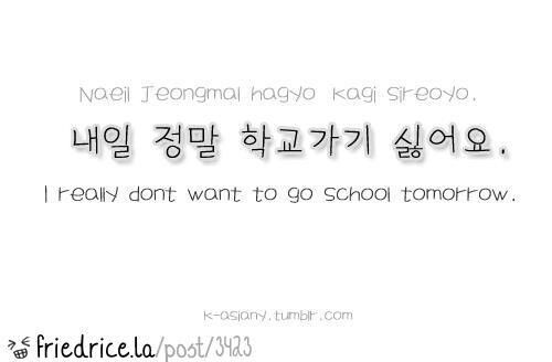 how to say you will definitely like it in korean