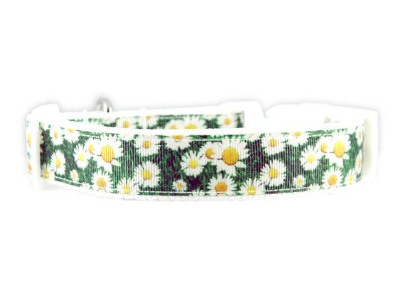 Daisy Dog Collar Flower Collars Matching Leash Available Adjustable Small Medium Large XL XXL White Flowers Floral Daisies Yellow Green