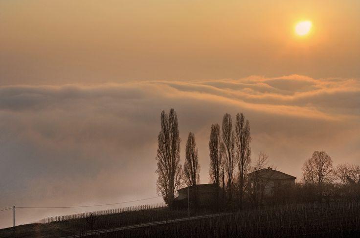 A foggy #sunset from #Monferrato. #Autumn could be a lovely season, here in #Italy. Monferrato: discover it.  Un #tramonto nebbioso tra le colline del #Monferrato. Anche l'#autunno può essere meraviglioso, in #Italia. Il Monferrato: un luogo da scoprire.