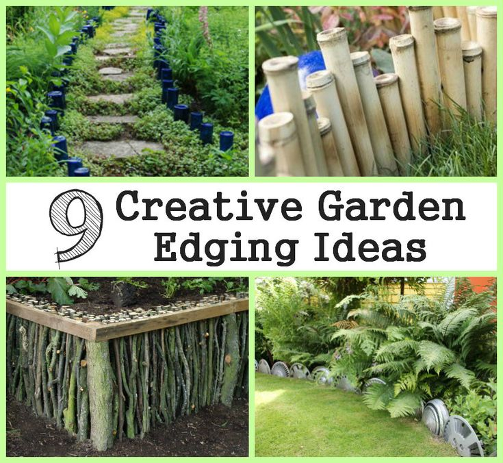 Homify S Best Garden Edging Tips And Ideas: 3197 Best Gardening Idea Images On Pinterest