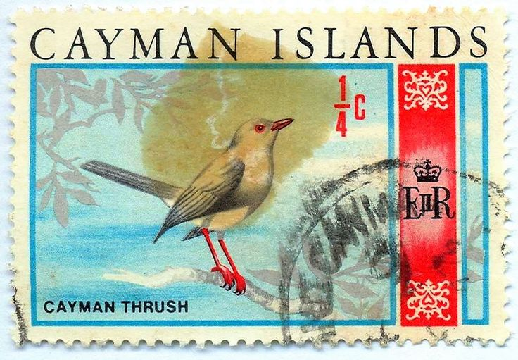 Grand Cayman Thrush on Cayman Islands 1/4 cent stamp, Sept. 8, 1970, after the Cayman Islands currency changed to the Cayman Islands Dollar from British pounds, shillings and pence.   Grand Cayman Thrush – Turdus ravidus, GC endemic, is extinct. This was the only Cayman Islands endemic bird species, as opposed to subspecies, and was last recorded in 1938, by C. Bernard Lewis, on the Oxford University Biological Expedition to the Cayman Islands. Photo in CaymanWildlife - Google Photos