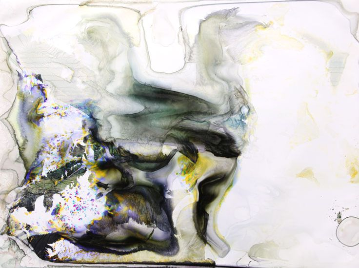 "Matthew Brandt-- Klamath Lake OR 4 C-print soaked in Klamath Lake water 30"" x 40"" 2010"