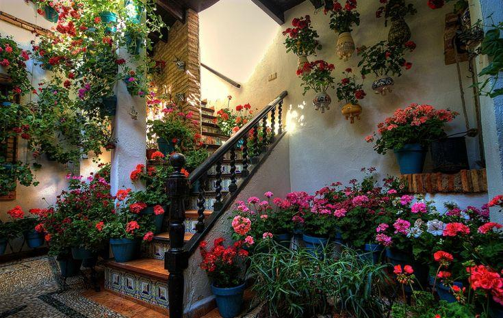 Фестиваль цветов в Кордове