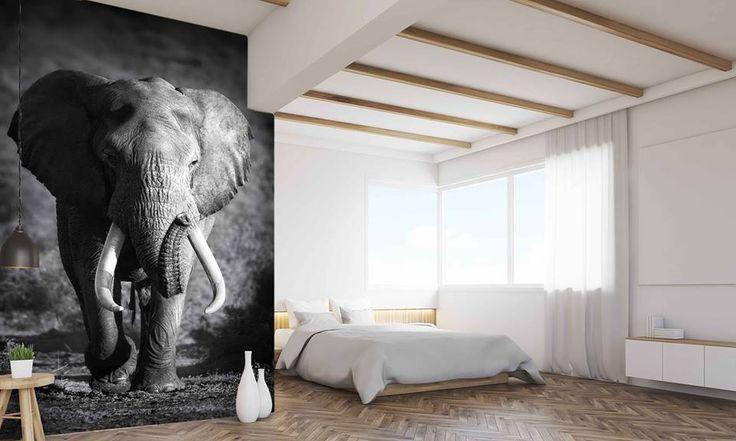 Słoń symbolizuje siłę i zdrowie. To symbol szczęścia, radości i powodzenia w życiu, a dużo słoni, to ogromne szczęście i powodzenie. Słoń to również symbol wiedzy. Takiego, też słonika proponujemy do waszego pomieszczenia :-) http://mural24.pl/konfiguracja-produktu/46494334/ #homedecor #fototapeta #obraz #aranżacjawnętrz #wystrójwnętrz, #decor #desing