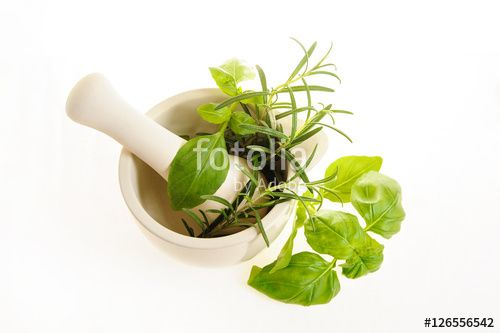 Healthy herbs in white ceramic mortar and a potted rosemary isolated on white, top view