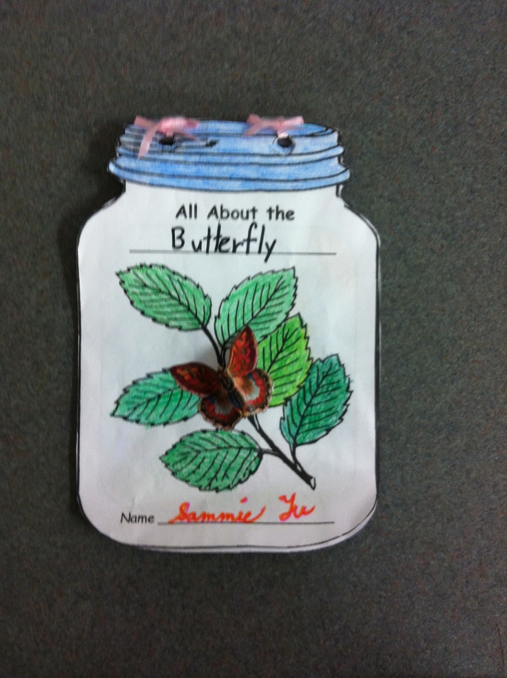 Insects Multi-Page Mason Jar Book Report lovely for mini-beasts theme.