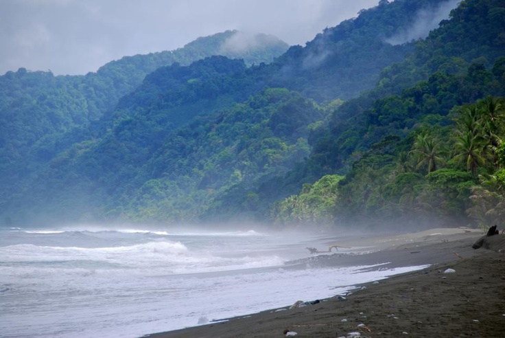 Carate, Osa Peninsula, southern Pacific Coast of Costa Rica. Corcovado national park is about 3 kms walking down this beach. Here´s a nice feature on the area on this month´s Travel and Leisure. http://www.travelandleisure.com/articles/exploring-costa-ricas-osa-peninsula