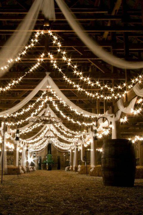 This is almost exactly what I'm thinking! Maybe not quite as many rows of tulle/lights as in this picture though!